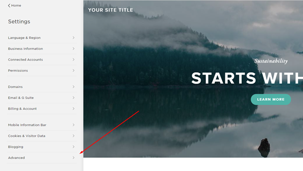 Advanced settings for SquareSpace